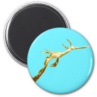 Goldener Weedy Seedrache Runder Magnet 5,7 Cm