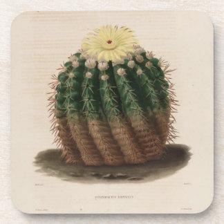 Goldenes Fass-Kaktus Getränkeuntersetzer
