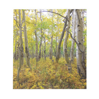 Goldenes Waldbett Notizblock
