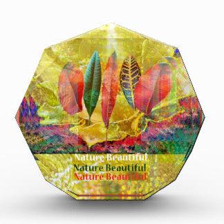 Goldern Blume und Blätter-Natur schön Auszeichnung