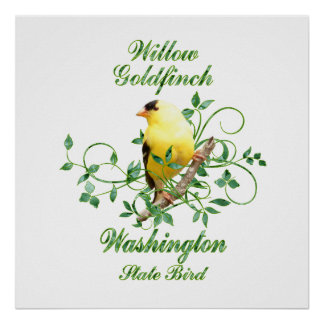 Goldfinch-Washington-Staats-Vogel Poster