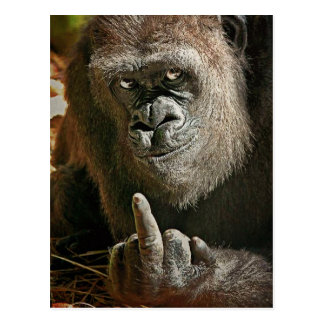 Gorilla-großer Mann Postkarte