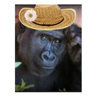 Gorilla in einem Strohhut, Postkarte
