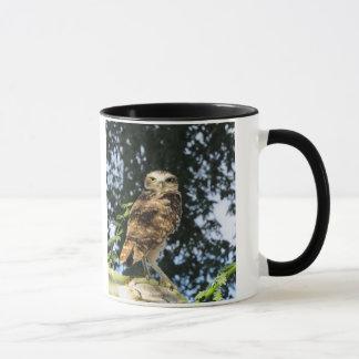 Graben der Eule Tasse