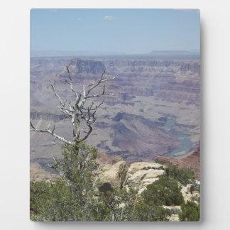 Grand Canyon Arizona Fotoplatte