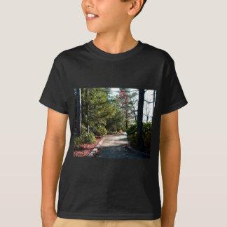 Grand Canyon Pennsylvanias T-Shirt