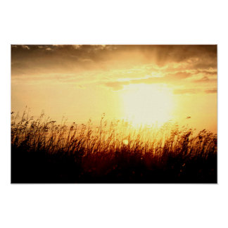 Grasland-Sonnenaufgang Poster