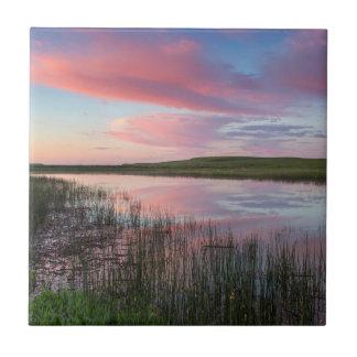 Grasland-Teich reflektiert glänzende Fliese
