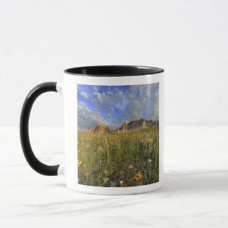 Grasland-Wildblumen am windigen Nebenfluss in den Tasse
