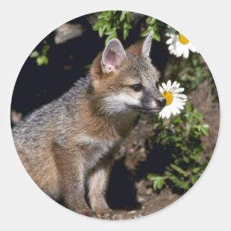 Graue Fox-junge Ausrüstung Runder Aufkleber