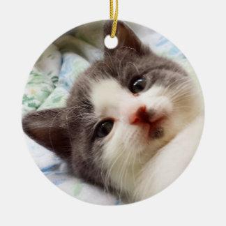 Graue u. weiße Kätzchen-Verzierung Keramik Ornament