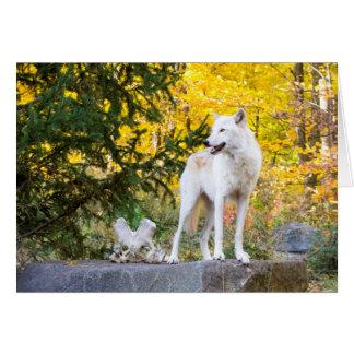 Grauer Wolf, goldenes Laub Karte