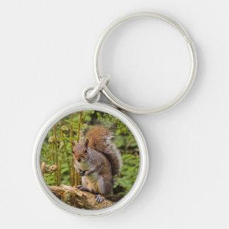 Graues Eichhörnchen Keychain/Schlüsselring Schlüsselanhänger