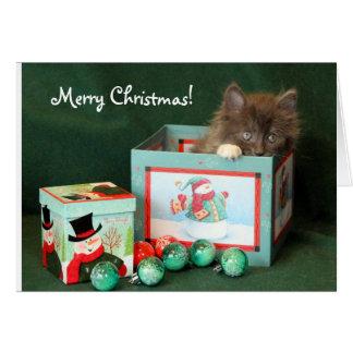 Graues Kätzchen im Weihnachtsgeschenk Karte