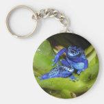 Grenouilles bleues de dard de poison dans la feuil porte-clefs