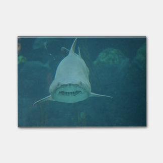 Grinsender Haifisch Post-it Klebezettel