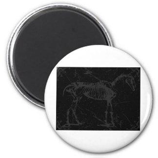 Gris squelettique de cheval aimants pour réfrigérateur