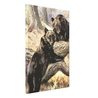 Grizzly-Bären durch CER Schwan, Vintage Waldtiere Leinwanddruck