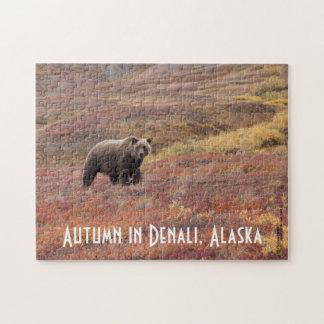 Grizzlybär zieht durch Herbst-Farben in Alaska um