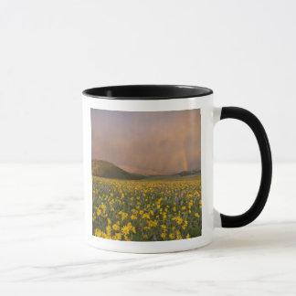 Großartige Wildblumewiese am Sonnenaufgang herein Tasse