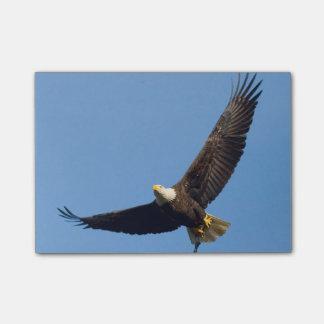 Großartiges Eagle Post-it Haftnotiz