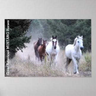 Große amerikanische MUSTANGS wilde Pferde Poster
