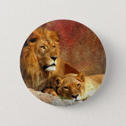 Große Katzen - 6 Runder Button 5,1 Cm