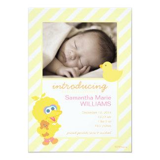 Große Vogel-Geburts-Mitteilung 12,7 X 17,8 Cm Einladungskarte