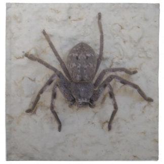 Große weibliche Jäger-Spinne, Serviette