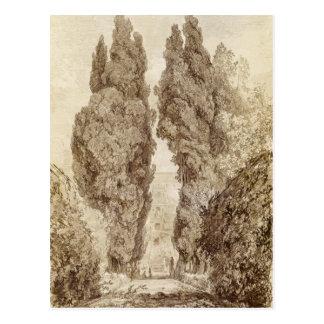Große Zypressen am Landhaus d'Este Postkarte