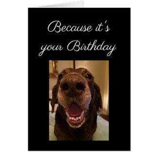 Großer Nasen-Hundelustiger Geburtstags-Liebe-Hund Karte