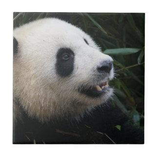 Großer Panda im Bambuswald Fliese