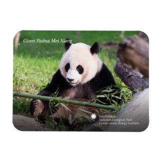 Großer Panda Mei Xiang Magnet