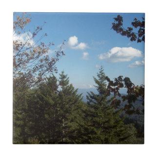 Großer rauchiger Berg Vista 5 Kleine Quadratische Fliese