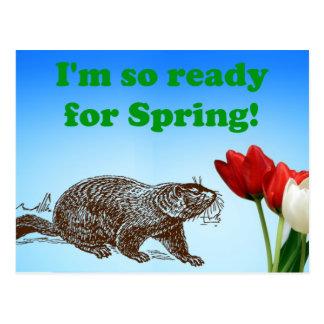 Groundhog Day so bereit zum Frühlings-Feiertag Postkarte