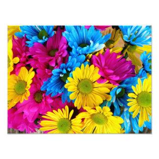 Groupe de fleurs photographie d'art