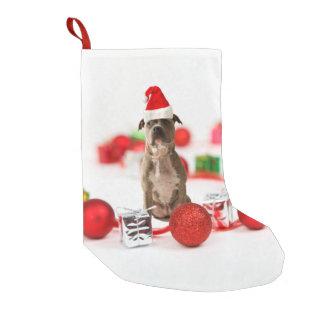 Gruben-Stier-Hund mit Geschenkboxen-und Kleiner Weihnachtsstrumpf