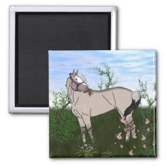 Grulla Pferd in der Weide Quadratischer Magnet