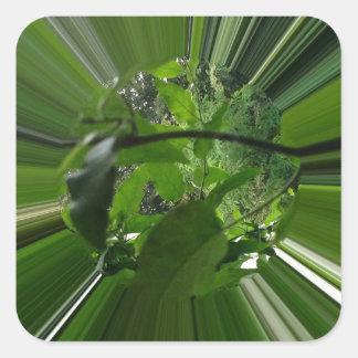 Grün ist die Hoffnung Quadratischer Aufkleber
