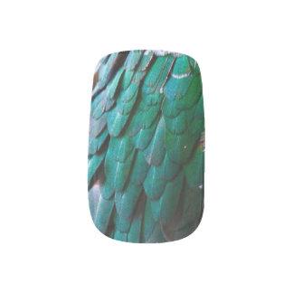 Grün oder Brown-Vogel-Federn Minx Nagelkunst