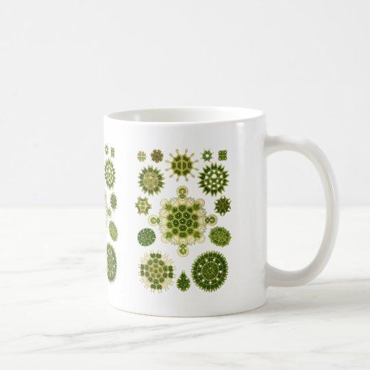 Grüne Algen Tasse