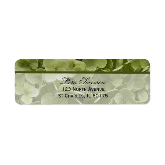Grüne Annabelle Hydrangea-Blumen-Rücksendeadresse