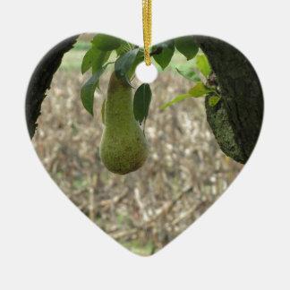 Grüne Birne des Singles, die am Baum hängt Keramik Herz-Ornament