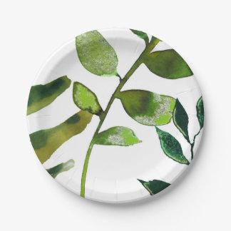 Grüne botanische bezaubernde Pflanze verlässt Pappteller