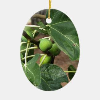 Grüne Feigen, die auf einem Feigenbaum reifen Ovales Keramik Ornament
