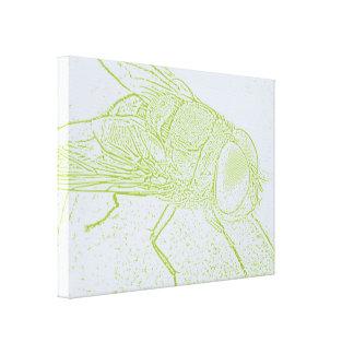 Grüne Fliege Gespannter Galeriedruck