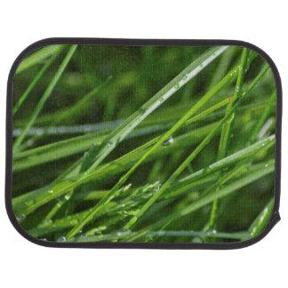 Grüne Grashalm-Natur-Szene Autofußmatte