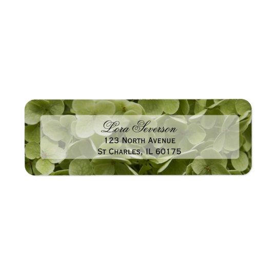 Grüne Hydrangea-Blumen-Rücksendeadresse