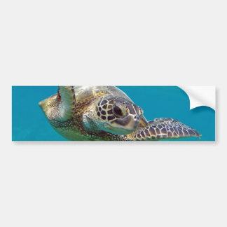 Grüne Meeresschildkröte Hawaiis - Honu Autoaufkleber