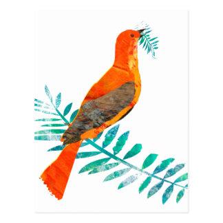 Grüne Niederlassungs-hübscher Friedensrot-Vogel Postkarte